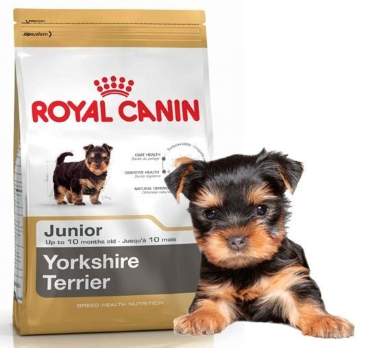 Сухой корм Роял Канин для собак. Купить Royal Canin для